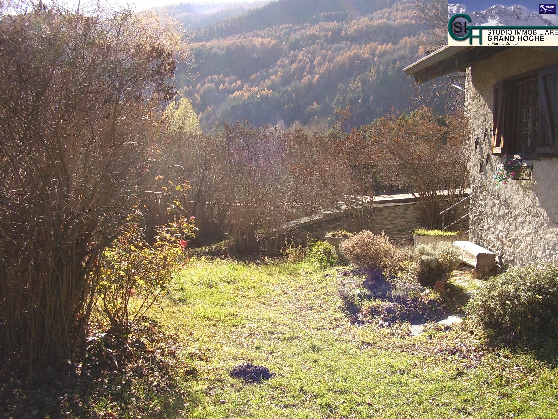 giardino (2)